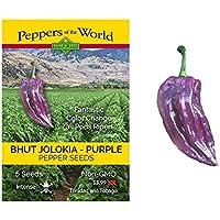 UEYR Semillas Naga Jolokia púrpura Pimienta