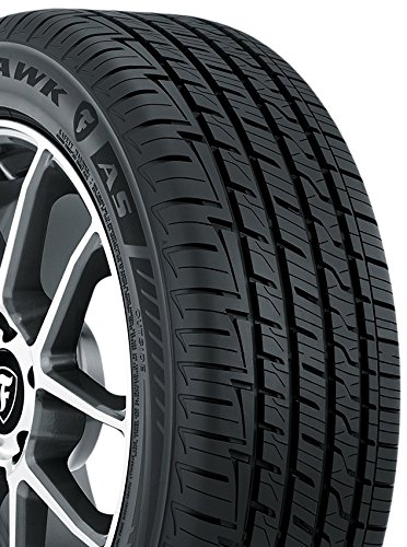 Firestone Firehawk AS Performance Radial Tire - 205/55R16 91H 001408