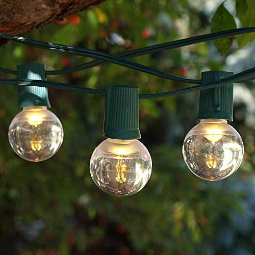 25 Led Smooth C9 String Lights in Florida - 7