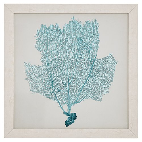 Classic Seafoam Blue Sea Fan Coral Coastal Print Wall Art Décor - 23
