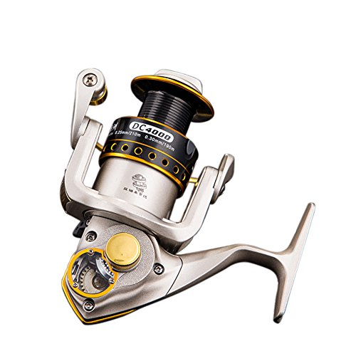 RG DC Fishing Reel Saltwater Professional Outdoor Sport Metal Strong Corrosion Resistance Stainless Steel Bearing High Speed Spinning Reel Gear For Fishing Enthusiasts (Bass Pro Fryer compare prices)
