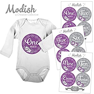 12 Monthly Baby Stickers, Purple, Gray, Flowers, Girl, Baby Belly Stickers, Baby Month Stickers, First Year Stickers Months 1-12, Purple, Grey, Baby Girl 18
