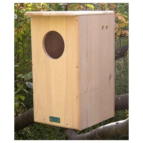Image of Home and Kitchen Coveside Barred Owl House