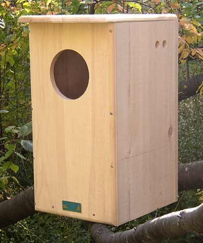 Coveside Barred Owl House ()