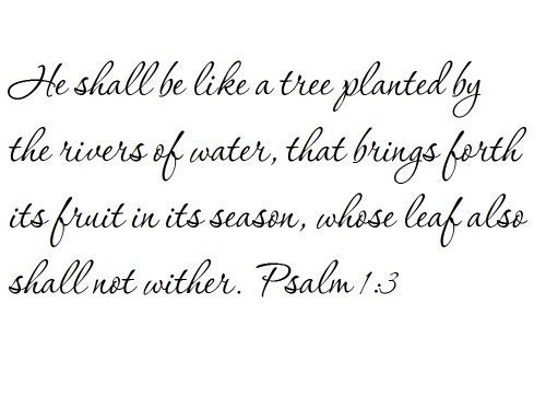 Tapestry Of Truth - Psalm 1:3 - TOT5240 - Wall and home scripture, lettering, quotes, images, stickers, decals, art, and more! - He shall be like a tree planted by the rivers of water, that brings... (A Tree Planted By Rivers Of Water)