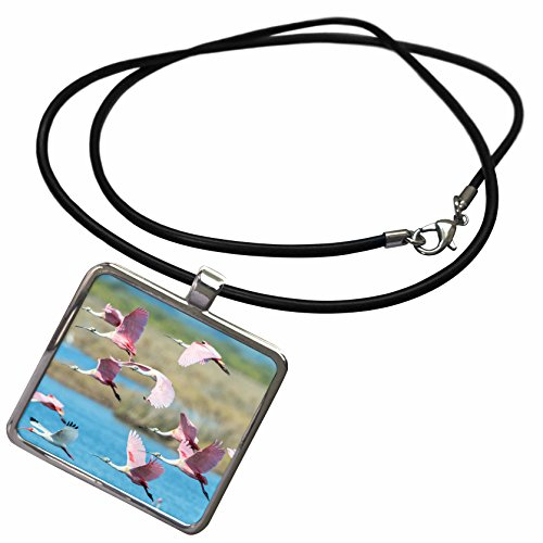 3dRose Danita Delimont - Birds - USA, Florida, Merritt Island, NWR, Roseate Spoonbills - Necklace With Rectangle Pendant - Merritt Square