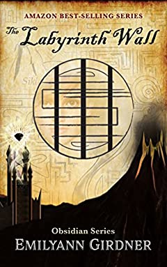 The Labyrinth Wall (Obsidian Series)