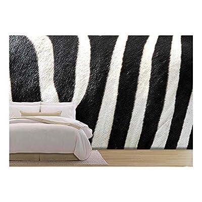 Beautiful Artisanship, Made For You, Striped Zebra Close Up Image