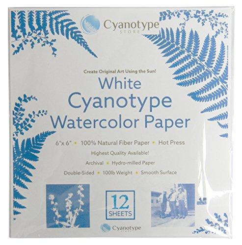 """Cyanotype 6"""" x 6"""" Paper - 12 Pack (White)"""