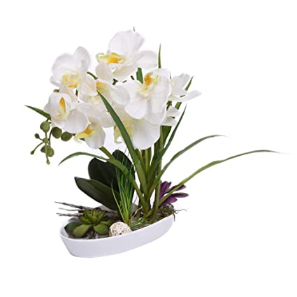 225 & Amazon.com: Maylife Artifical Silk Flowers in Vases Fake ...