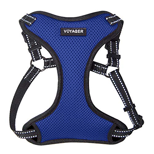 Voyager by Best Pet Supplies - Fully Adjustable Step-In Mesh Harness with Reflective 3M Piping (Royal Blue, Medium) from Best Pet Supplies, Inc.