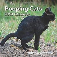 Image for Pooping Cats Calendar 2021: Funny Cat Lover Wall Calendar Gag Joke Gift - Women, Men, Crazy Lady, Birthday, White Elephant Party, Secret Santa, Exchange, Stocking Filler, Christmas