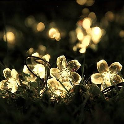 Innoo Tech Outdoor Solar String Lights 21ft 50 Led Blossom Flower Fairy Light for Garden Patio Wedding Party Bedroom Christmas Decoration Warm White