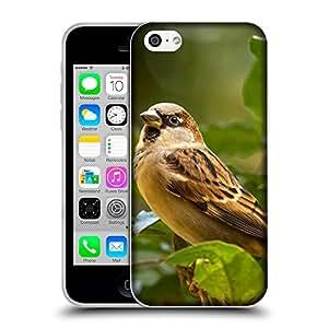 Super Galaxy Coque de Protection TPU Silicone Case pour // V00000205 pájaro del gorrión // Apple iPhone 5C