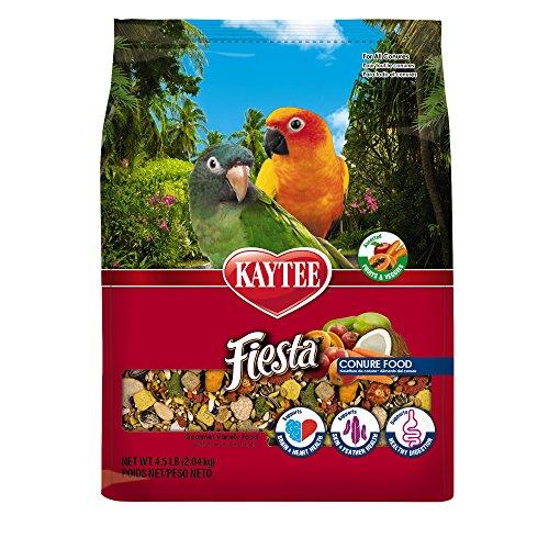 Kaytee Fiesta Gourmet Variety Bird Food For Conures,  4-1/2-Pound Bag from Kaytee