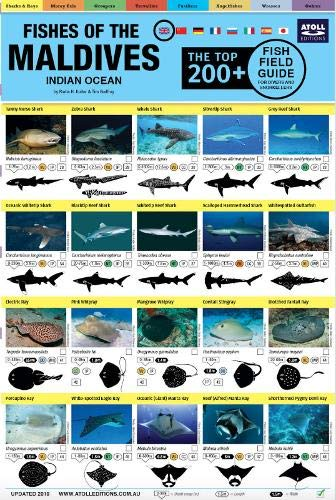 Maldives Fish Field Guide 'Top 200+'