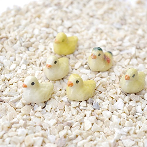6 pcs Miniature Dollhouse Animal Fairy Garden Micro Landscape DIY Landscaping Handmade Color May Vary (Little Duck)