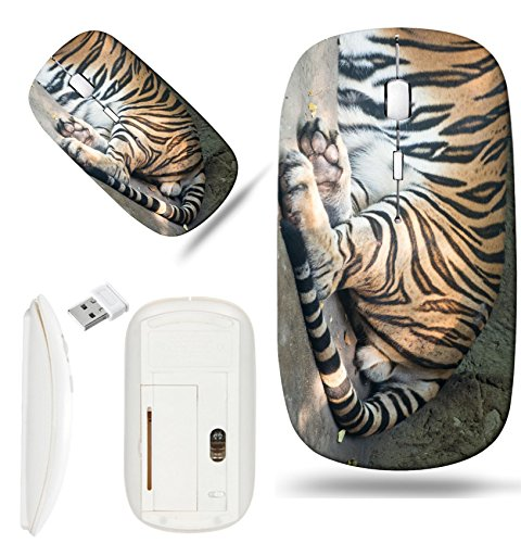 - Luxlady Wireless Mouse White Base Travel 2.4G Wireless Mice with USB Receiver, 1000 DPI for notebook, pc, laptop,mac design IMAGE ID: 34651382 Close up a Bengal Tiger