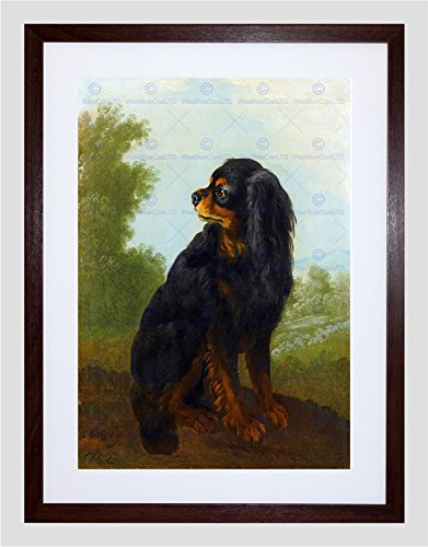 PAINTING ANIMAL OUDRY CAVALIER KING CHARLES SPANIEL FRAMED PRINT F12x9586 - Cavalier King Charles Spaniels Framed