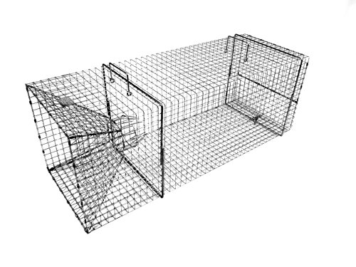 Tomahawk Rigid Single Door Extra Large Fish Trap (Perch Trap)