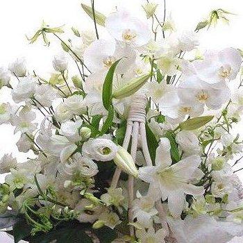 カサブランカ 胡蝶蘭 と白い花 お供え 法事 法要 お悔やみ 一周忌日 四十九日 3回忌の花 アレンジ B00IB7JE42