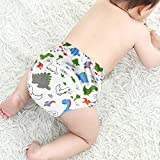 CottonTraining Pants 4 Pack Padded Toddler Potty