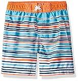 Wippette Baby Boys Quick Dry Swim Trunk, Multi Stripe Orange, 18M