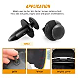 GOOACC Nylon Bumper Fastener Rivet Clips Car Door