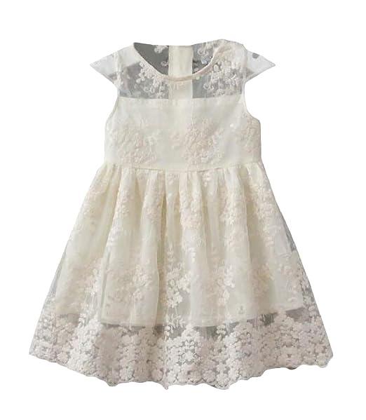 11729179aa5e Sweatwater Girl s Mesh Princess Sleeveless Lace O-Neck Summer Dresses Beige  3T
