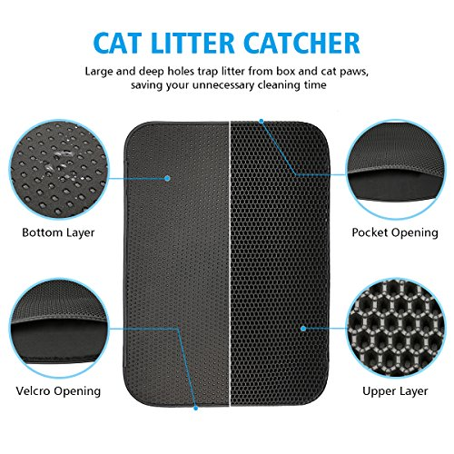 Buy what is the best litter box for multiple cats
