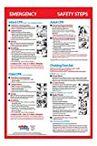 Infant, Child & Adult CPR & Choking First Aid - LAMINATED, 12x18 Poster