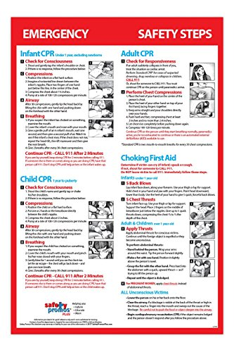 Infant, Child & Adult Cpr & Choking First Aid - Laminated, Poster