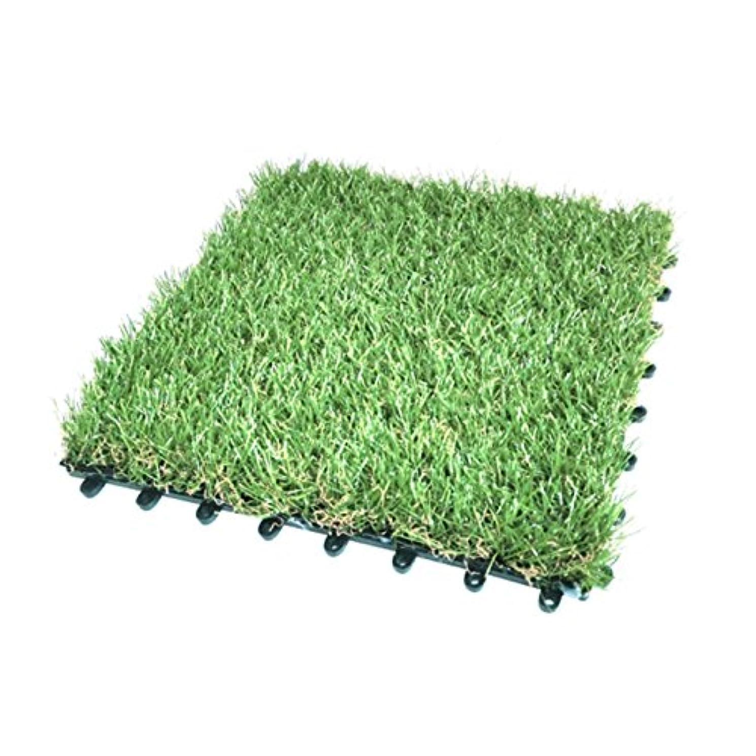 技術的な脅かすライムLiebe【リーベ】 人工芝 芝丈 35mm 1×10m U字ピン16本 『パークシア シンプル』