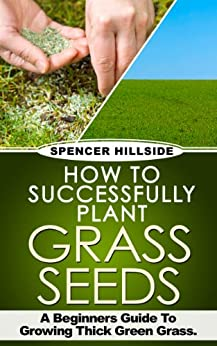 How To Successfully Plant Grass Seeds