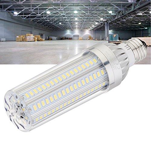 360 Degree Led Area Light