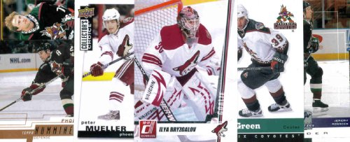 Topps PHOENIX COYOTES Hockey Card Team Lot - 125 Assorted Cards