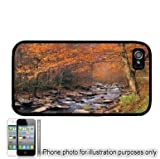 Autumn Leaves Stream Photo Apple iPhone 4 4S Case Cover Black