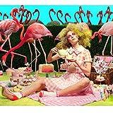 Hair Srunchies,4 Style Elastic Hair Bands for Girls Women,4 Pcs Branch Pattern Hair Bow Chiffon Ponytail Holder,Colorful Hair Scrunchy Bobbles Soft Hair Bands Ties Headband