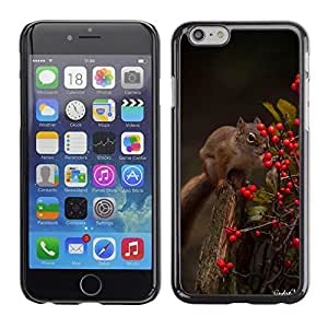 Plastic Shell Protective Case Cover    Apple iPhone 6    Squirrel Forest Berries Animal Nature Green @XPTECH