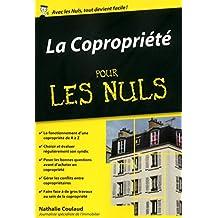 La Copropriété Poche Pour les Nuls (French Edition)