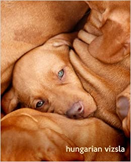 hungarian vizsla a gift journal for people who love dogs hungarian