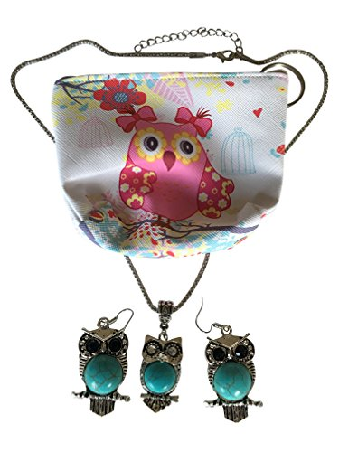 Owl Silver-Tone Framed Turquoise Stone Beautiful Necklace & Earrings Set and Owl Design Coin/Change Purse