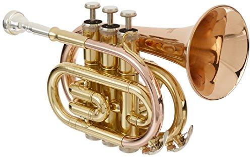 Roy Benson RBPT101G Bb Pocket Trumpet by Roy Benson
