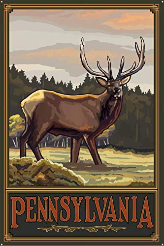 Pennsylvania Elk Hills Metal Art Print by Paul A. Lanquist (24