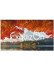 """ExquizOn Pantalla para Proyector Colgante 100"""", 160° Ángulo de Visión 16:9, Valor de Ganancia 1.2, Pantalla de Proyección Portátil Enrollable para Uso Interior y Exterior, Películas 4K HD"""