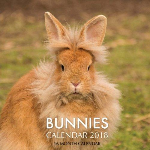 Bunnies Calendar 2018: 16 Month Calendar