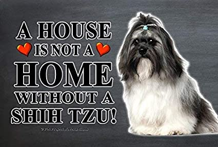 Amazoncom Shih Tzu Long Hair A House Is Not A Home 8x12 Inch