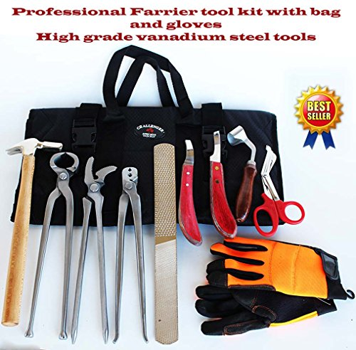 Horse Farrier Tool Kit Grooming Hoof Bot Knife Shoe Puller Nipper Clincher 98498 by ProRider USA