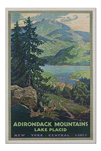 - New York Central Lines - Adirondack Mountains Vintage Poster (artist: Greene) USA (20x30 Premium 1000 Piece Jigsaw Puzzle, Made in USA!)