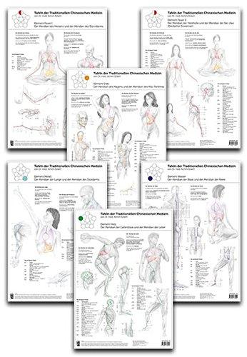 Set Von 6 Tafeln Der Traditionellen Chinesischen Medizin